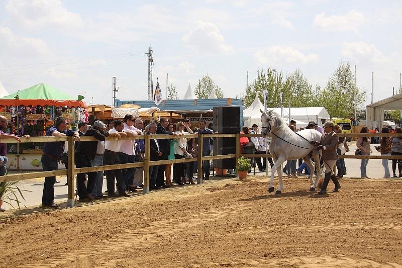 Abre la XXI Feria Agroganadera de Los Palacios y Villafranca, dedicada al turismo, inaugurada hoy por siete destacados restauradores locales