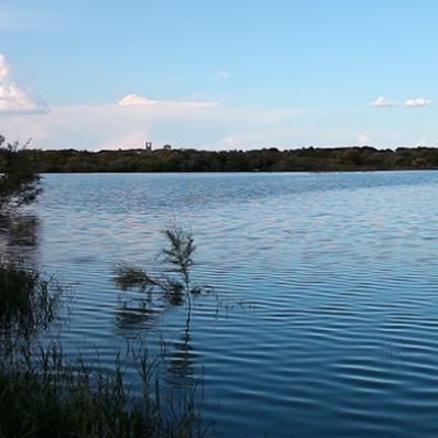 "Laguna La Mejorada  ""Lago de Diego Puerta"""